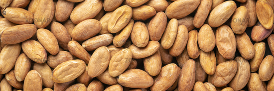 raw cacao beans background