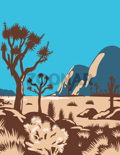 Joshua Tree National Park Riverside County California United States WPA Poster Art Color