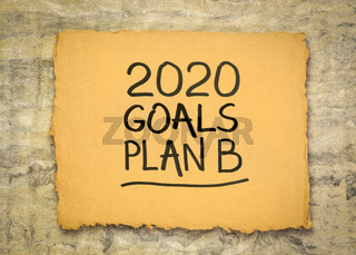 2020 goals plan B - change of business and personal plans