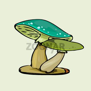 green color mushroom