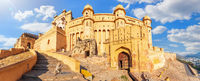 Amber Fort, beautiful panorama with a cute monkey, Jaipur, Rajasthan, India