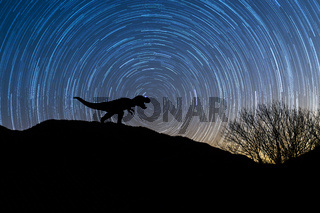 Silhouette of tyrannosaurus rex at night with startrail in the background.