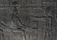 Hieroglyphic egypt carvings on wall