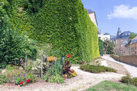 Historic city of Luxembourg, Medieval stronghold wall covered with ivy