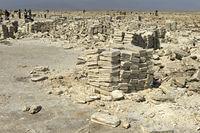 Traditioneller Abbau von Salz am Assale Salzsee. Behauene Salzplatten sind bereit für die Verladung auf Dromedare