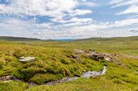 Landscape Prestholtseter Norway