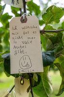 Etikett mit Wunsch hängt in einem Baum