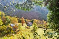 Autumn in Carpathian mountains