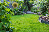 Landscape view of  beautiful garden with freshly mowed lawn and flowerbed. Soft focus on foreground plants.