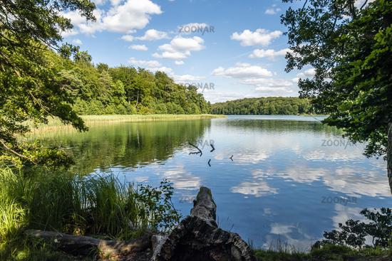 Liepnitzsee in Brandenburg. Deutschland, lake Liepnitzsee in Brandenburg, Germany