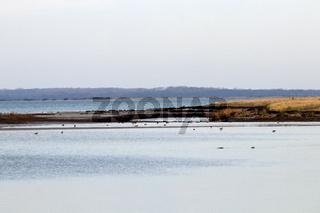 Landschaft 008. Insel Poel