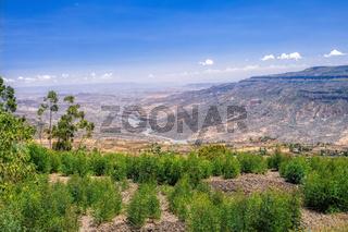 mountain landscape with canyon, Ethiopia