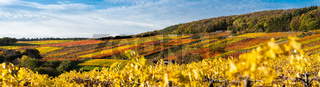 Hiking in the Ahr valley on a sunny autumn day on the red wine trail