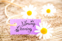 Label With Calligraphy Spring Cleaning, Daisy Flower Blossom