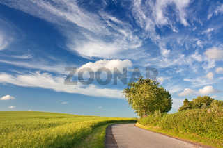 Blauer Himmel mit Wolken über Landschaft mit Rapsfel
