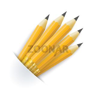 Convert Pencils Bag