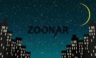 City houses night starry sky