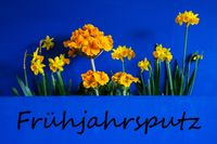 Spring Flowers, Narcissus, Text Fruehjahrsputz Means Spring Cleaning