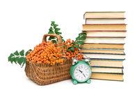 rowan berries, books and clock alarm clock on a white background