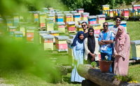people group visiting local honey production farm