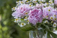 Blumenstrauß mit Pfingstrosen (Paeonia) und Kamille
