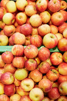Viele frische Äpfel
