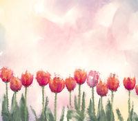 Watercolor digital painting of tulip flowers.