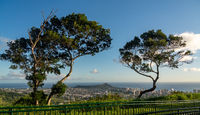 Panorama of Waikiki and Honolulu from Tantalus Overlook on Oahu