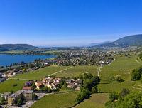Landschaft am Bielersee,  Blick auf das Städtchen Le Landeron, Kanton Neuenburg, Schweiz