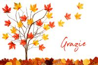 Tree With Colorful Leaf Decoration, Leaves Flying Away, Grazie Means Thank You