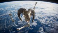 rams skull with bones at Earth orbit