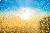 Beautiful sunset with water rain drops
