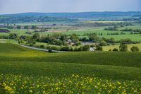 Spring countryside view with road, rapeseed yellow blooming fields, village, hills. Ukraine, Lviv Region.