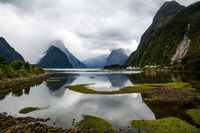 Water of the Milford Sound fjord