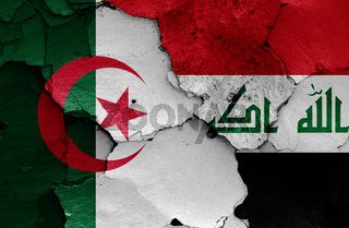 flags of Algeria and Iraq painted on cracked wall