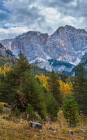 Overcast morning autumn alpine Dolomites mountain scene. Peaceful view near Valparola Path, Belluno, Italy.