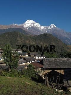 Idyllic village Ghandruk and snowcapped Annapurna South