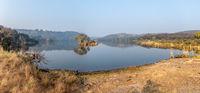 Jungle India. Ranthambore National Park Rajasthan India. Beautiful nature of India