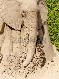 Sandkunst im Blühenden Barock, Ludwigsburg, Thema Afrika,  Detail Elefant