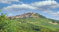 La Morra,Piemont,Italien