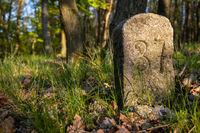 historischer grenzstein Landesgrenze Preußen Anhalt im Harz bei Zhale