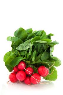 Freshness radish