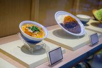 fake, plastic food models in asian restaurant window