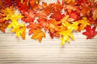 Herbstblatt auf Holzhintergrund
