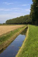 Landscape near Nieuwendijk