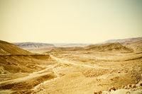 Vintage Style Desert