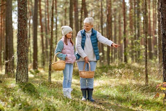 grandmother and granddaughter picking mushrooms