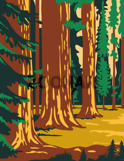 Sequoia and Kings Canyon National Park in Sierra Nevada California United States WPA Poster Art