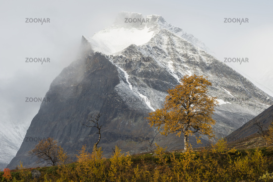 der Berg Duolbagorni (Tuolpagorni) im Tal Laddjuvagggi, Kebnekaisefjaell, Lappland, Schweden