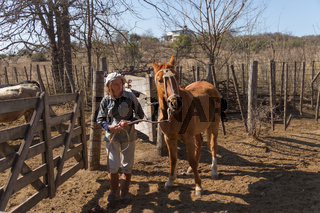 rural woman working in the field leading horse